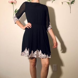 Ted Baker Black Dress with Gorgeous Lace Detail